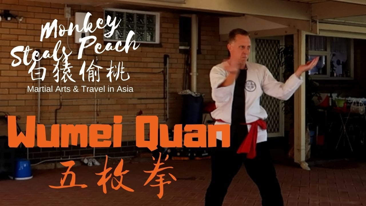 The Wumei Quan System of the late Anthony Wee - Shane Francis of Perth p1