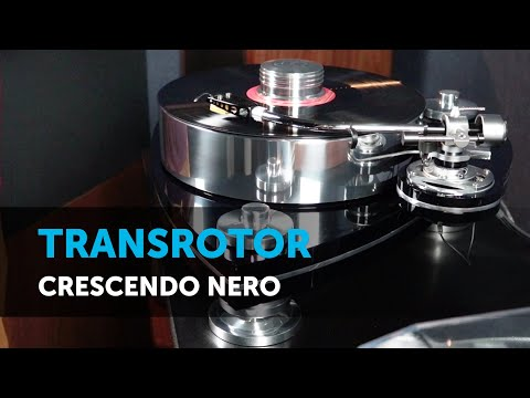 Transrotor Crescendo Nero. Винил высокого класса
