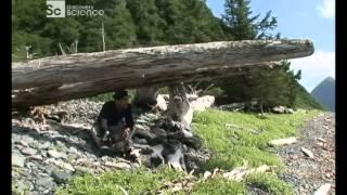 Наука Выживать Аляска Discovery