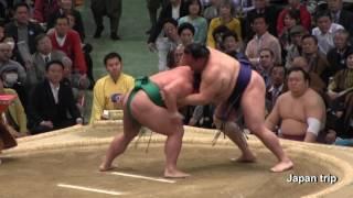 2017大相撲大阪春場所での嘉風 vs 北勝富士の取組。