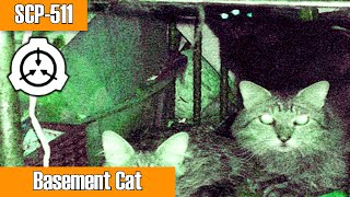 SCP-511 Basement Cat | Object Class Euclid | Animal SCP