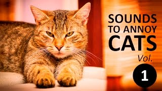 10 SOUNDS TO ANNOY CATS | Make your Cat Go Crazy! HD Vol. 1