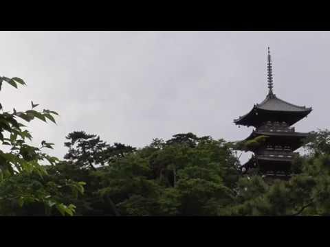 Kamakura History: The Origins of the Minamoto.