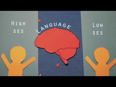 Effects of SES on Language in the Brain