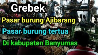 Download lagu Survei Pasar Burung Ajibarang kabupaten Banyumas MP3
