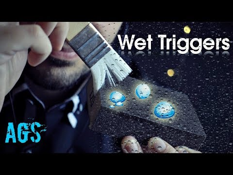 Wet ASMR Triggers (AGS)