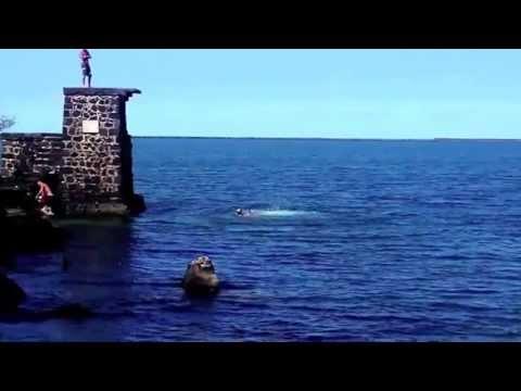 Jumping in at Coconut Island, Hilo, Hawaii