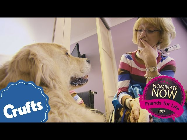 Giving Longevity Through Assistance | Eukanuba Friends For Life 2017