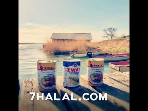 Enjoy حلال friendly travel experience with 7Halal.com Team in Finland (Suomi, The Åland Islands)