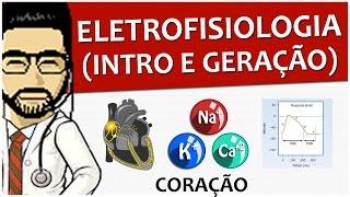 Gambar cover Coração 08 - Eletrofisiologia (Intro e geração do impulso) - Vídeo aula de Sistema circulatório