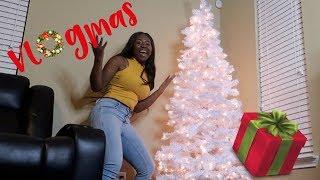 I FINALLY FOUND MY FAMILY TREE !! VLOGMAS DAY 9 | IAMJUSTAIRI