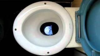 Swiss Train Toilet.  Lookout below.