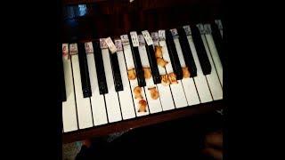 """Инесса Шарга-""""Обучение детей и взрослых игре на фортепиано с помощью развития моторной памяти"""""""