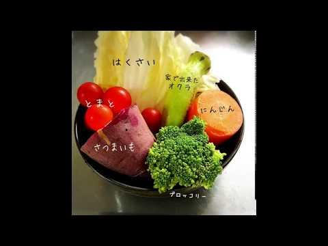 猫手作りご飯お野菜たっぷりスープ