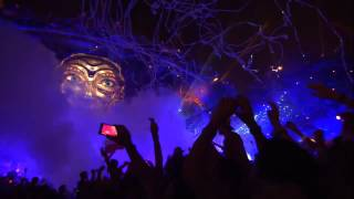 Hardwell -Tiësto Adagio For Strings vs Moti Lion Live at Tomorrowland 2014 FULL HD 2