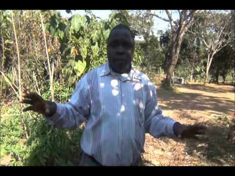Eston Mgala   Rethinking Permaculture for Africa
