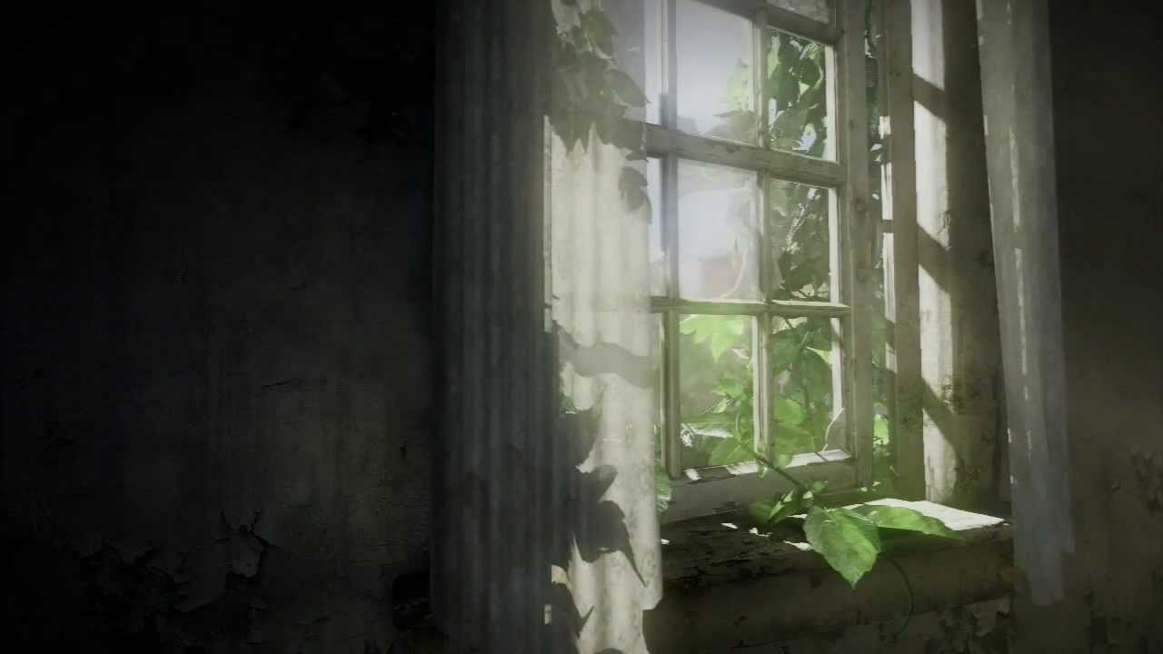 The last of us background download for digital version how it works