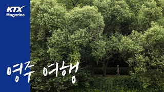 [KTX매거진] 경북 영주 여행_소수서원