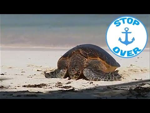 The Seychelles Treasure Islands, on board the Ponant (Documentary, Discovery, History)