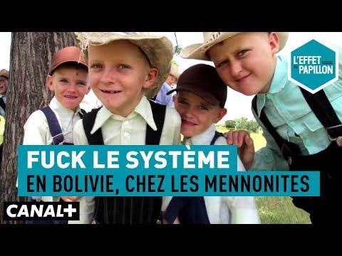 Fuck le système : En Bolivie, chez les Mennonites - L'Effet Papillon – CANAL+