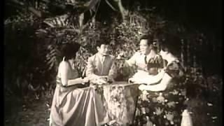 Ván bài lật ngửa Tập 3 Phát súng trên cao nguyên dangthanhnghi violet vn   YouTube