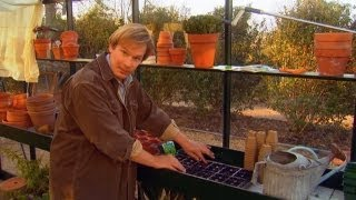 Growing Vegetables in the Fall | P. Allen Smith Classics
