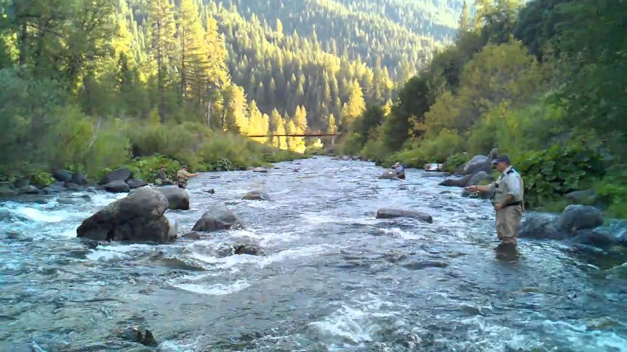 Fly Fishing Upper Sacramento River Youtube