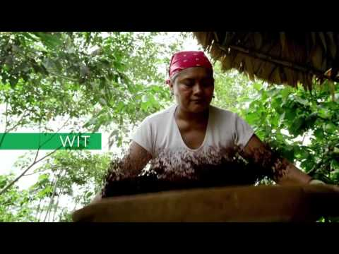 Costa Rica Essential - Nature - Culture - Adventure -
