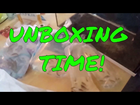 Unboxing New Fish and Frozen Food.  Feeding Fancy Goldfish Artemia.