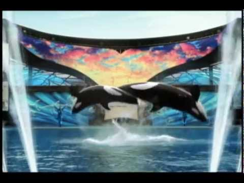 Promotional video for SeaWorld Parks and Entertainment