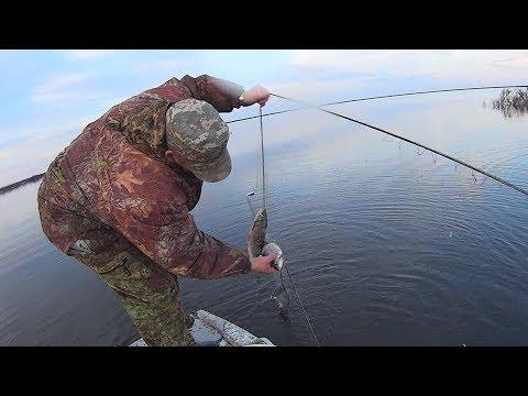 Вылов рыбы сетями.