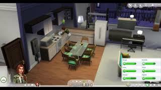 Série The Sims 4 (parte 2)