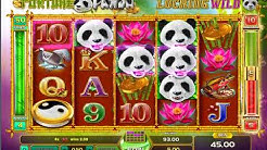 FORTUNE PANDA Free Spins Bonus Online Slot Machine Live Play
