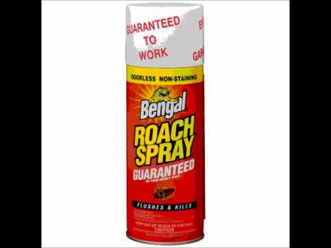 Bengal Roach Spray Youtube