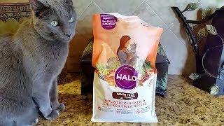Jericho & Thunder Eat the Reformulated Halo Dry Cat Food
