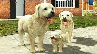 Симулятор маленькой СОБАЧКИ как симулятор КОТЕНКА родился щенок смешное видео для детей Валеришка