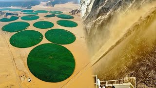 China's Techniques Transform Barren Lands Productive And Green