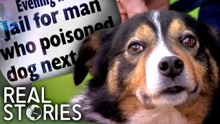 Pet Poisoners (Crime Documentary) | Real Stories