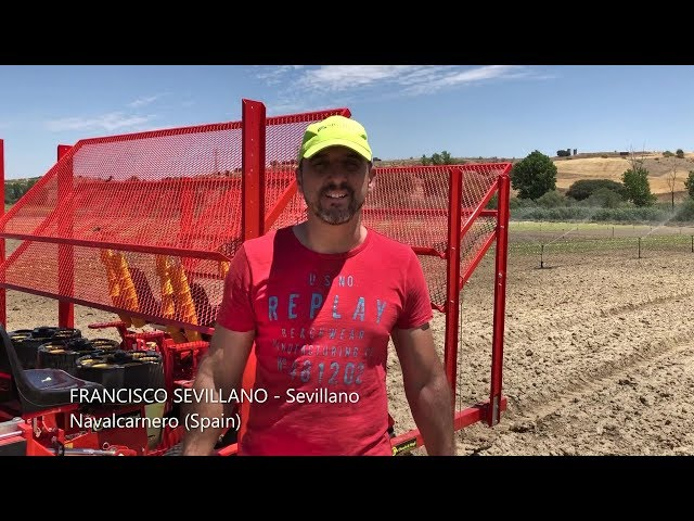 TESTIMONIAL CHECCHI & MAGLI - Francisco Sevillano (SPAIN)