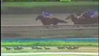 Clasico Jose Antonio Paez 2002