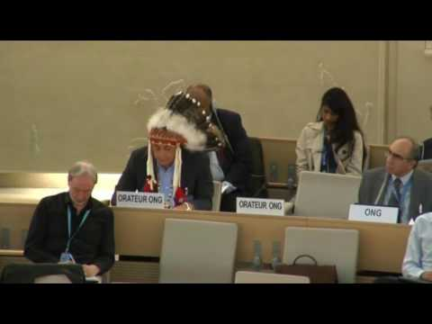 Standing Rock Sioux Chairman takes #NODAPL to the United Nations