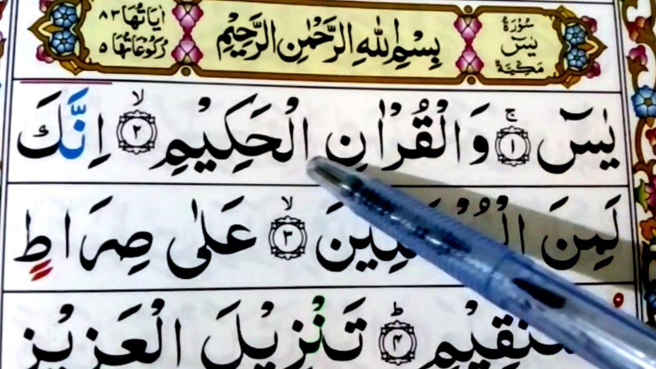 Surah Yasin Yaseen Surah Yaseen Full Arabic Hd Text Learn Word By Word Kid S Quran Youtube