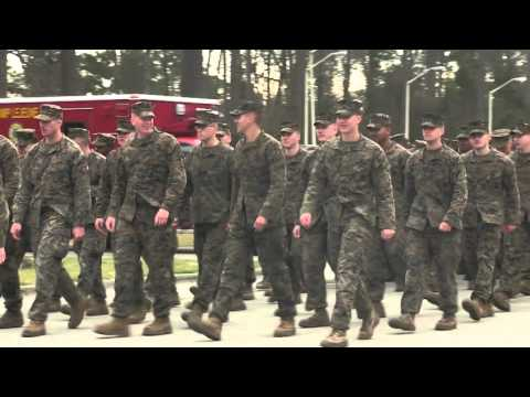 2nd Marine Division 75th Anniversary Parade