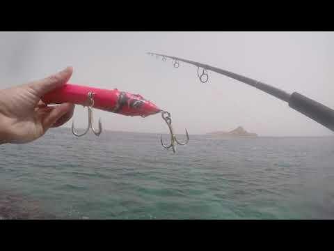 Djibouti - 7 Brothers - GT Fishing Trip - June 2016