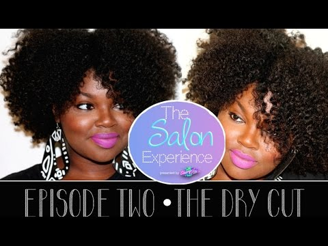 The Salon Experience - The Dry Cut | Episode 2