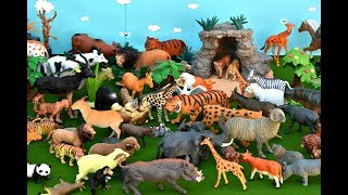 Wild Zoo Animals Cute Happy Toys Animal Safari for childrens! Animales de juguetes!