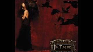 In Tenebris - wounded bird