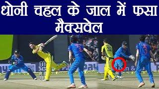India Vs Australia 3rd ODI: MS Dhoni fools maxwell with a brilliant stumping | वनइंडिया हिंदी