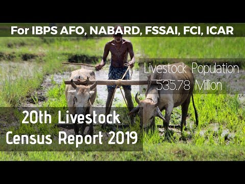 20th Livestock Census Report | Total Livestock And Poultry Population In India 2019