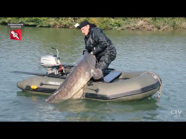 Рыбалка в Беларуси. Платная рыбалка. Ловля форели и пираний / Специальный репортаж